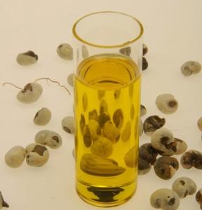 baobab seeds baobab oil